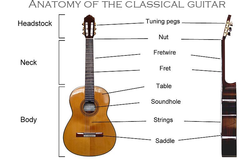 The Spanish classical guitar - Guitar From Spain
